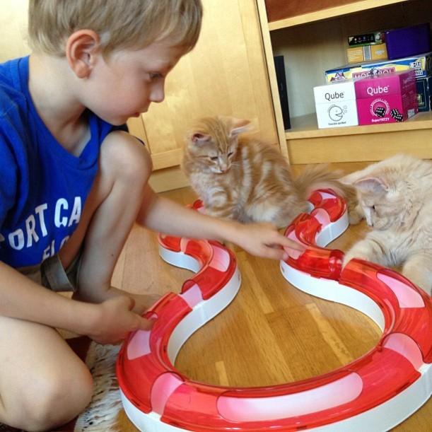 Elliot, Leo och Pirlo