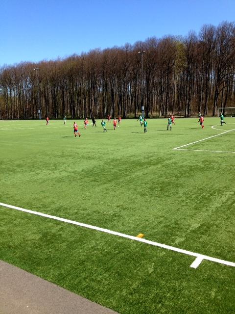 Gräs är grönt. fotboll hittar man överallt.